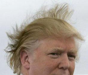 Donald Trump wild hair