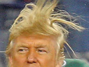 Donald Trump Hair Day